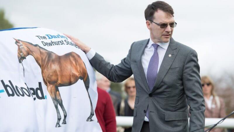 man holding a shirt with a horse drawing