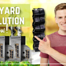 Backyard Revolution Review - Does it Work or Not?