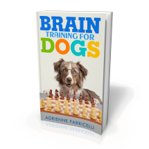 Brain Training for Dogs Review - Worthy or Scam? Read Before You Buy!