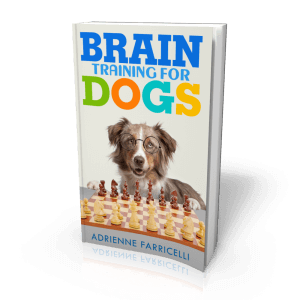 Brain Training for Dogs Review – Worthy or Scam?