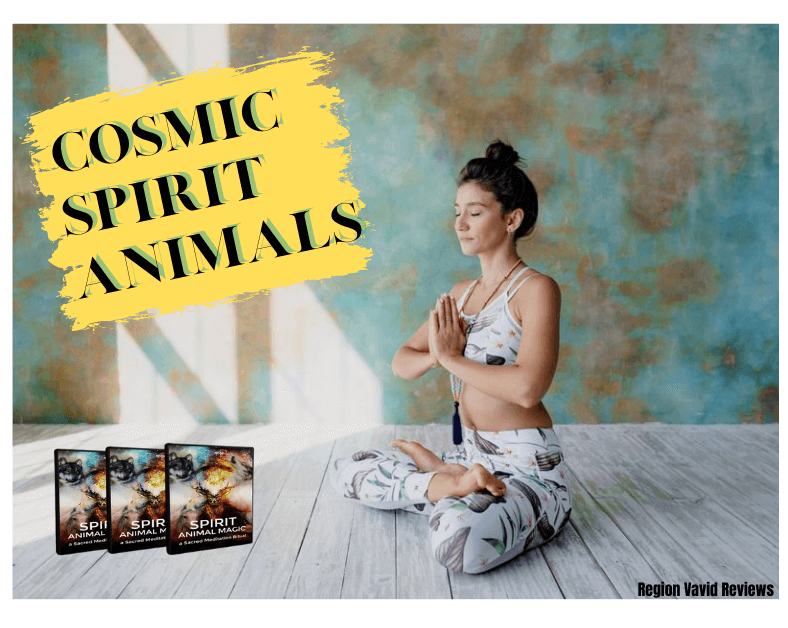 Cosmic Spirit Animals Mind Training