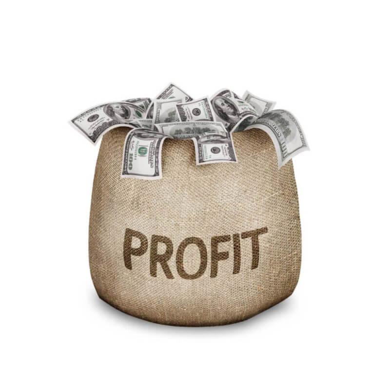 profit money
