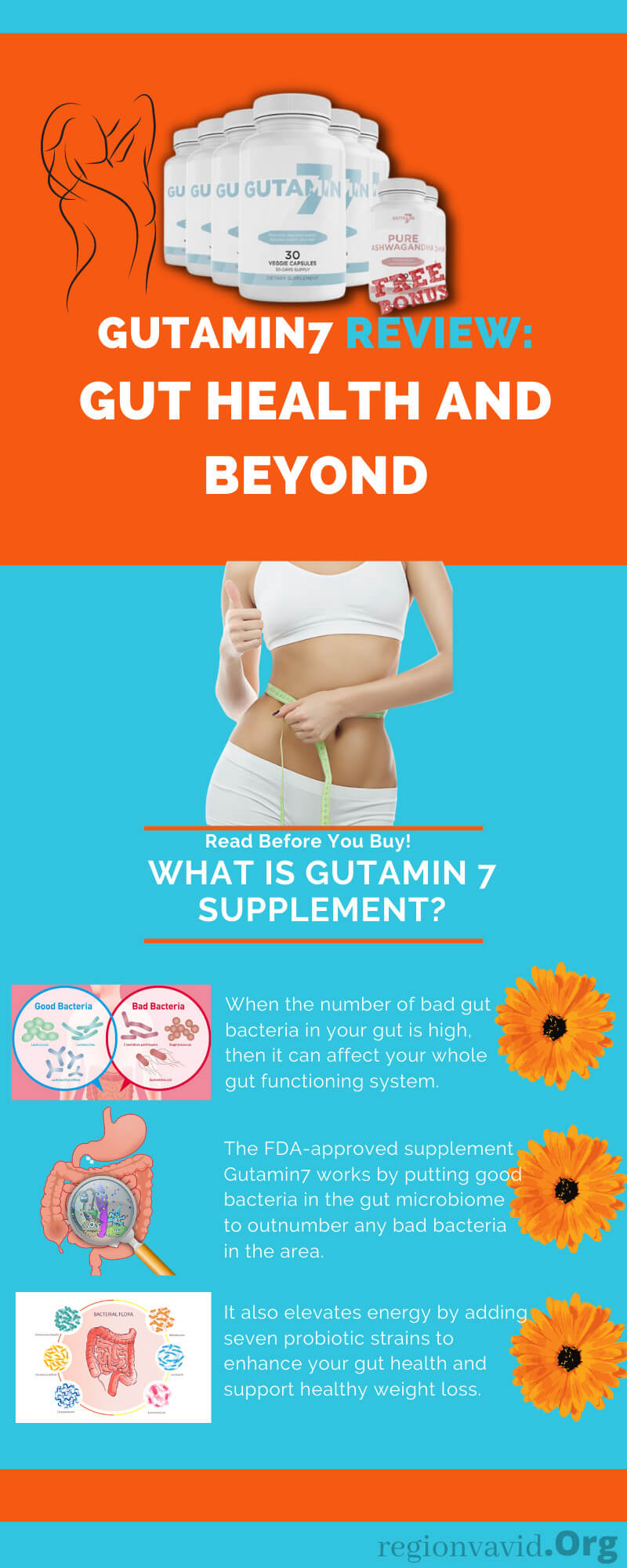 Gutamin7 About Gut Health And Beyond