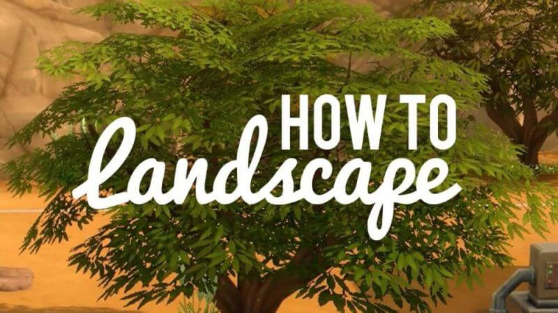 how to landscape and trees in the background