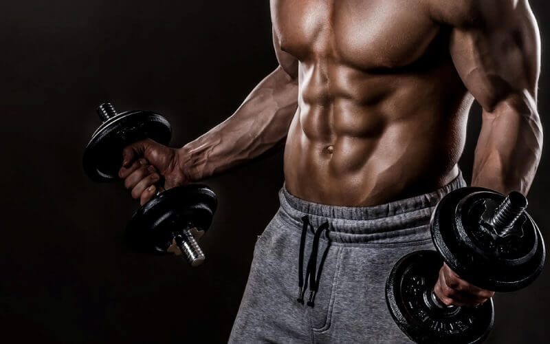 V3 Vegetarian Bodybuilding System Review – Read Before You Buy