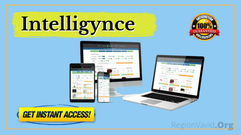 Intelligynce Product Image