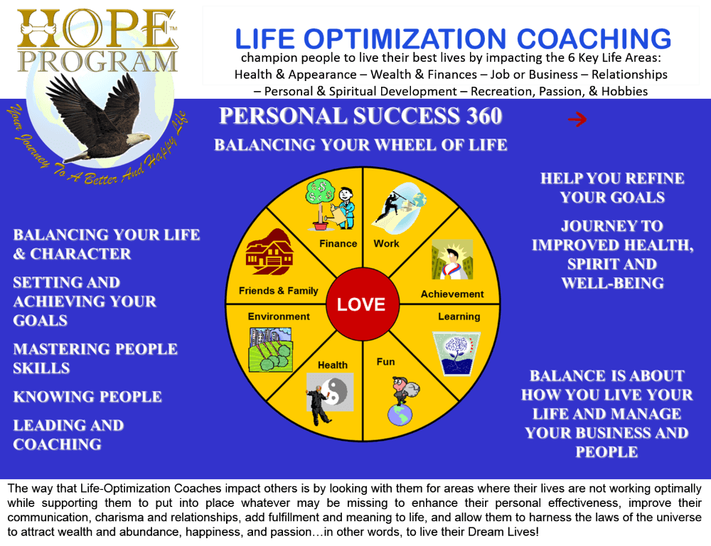 life optimization coach review