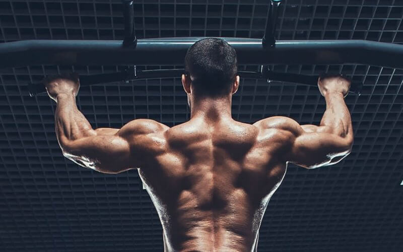 musculine's man back
