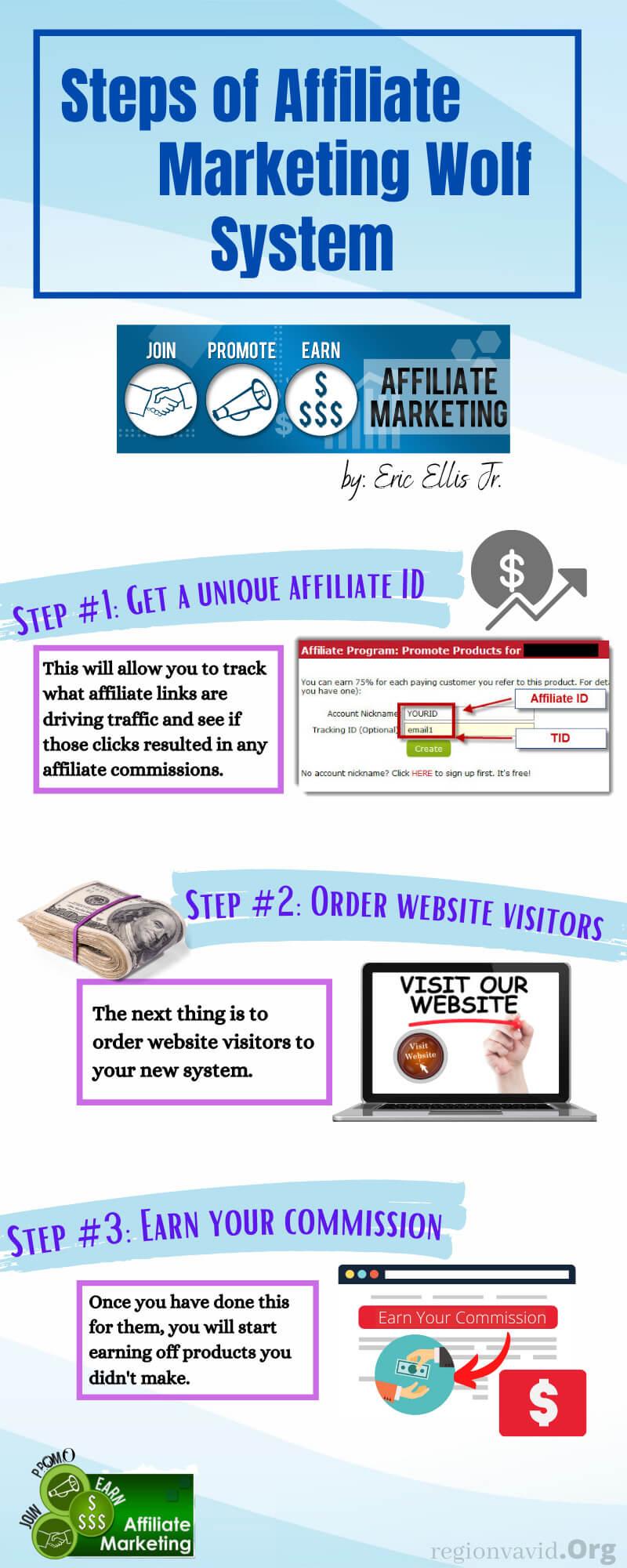 Affiliate Marketing Wolf Steps of the Program