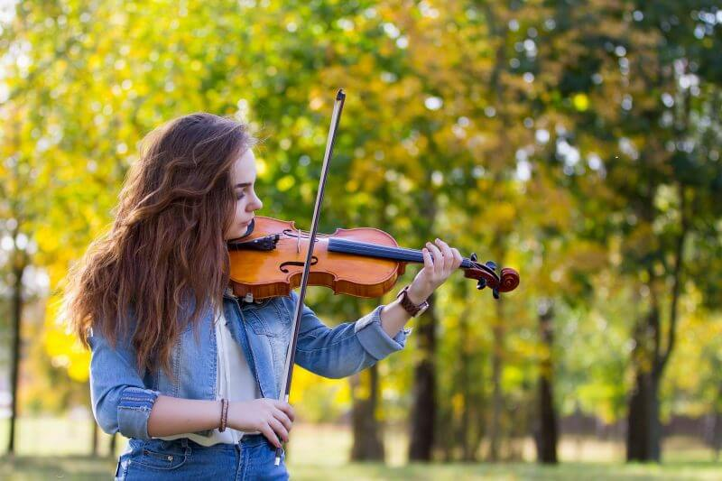 Red Desert Violin