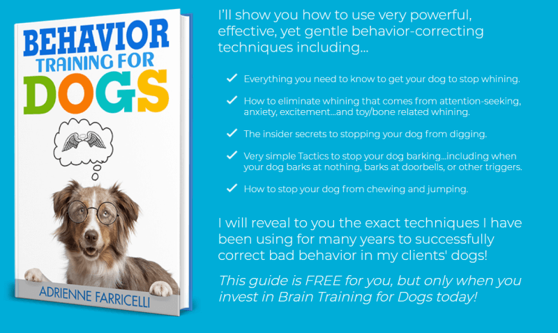 behavior training for dogs book