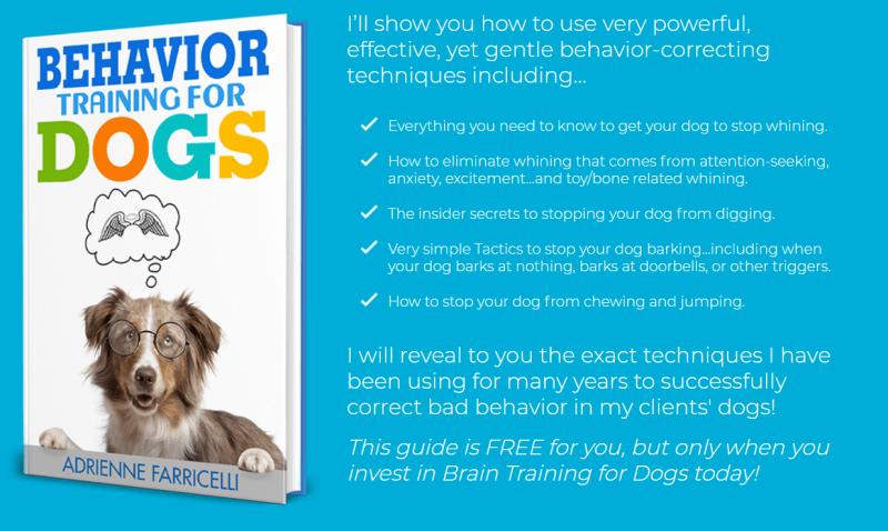 behavior training for dogs book