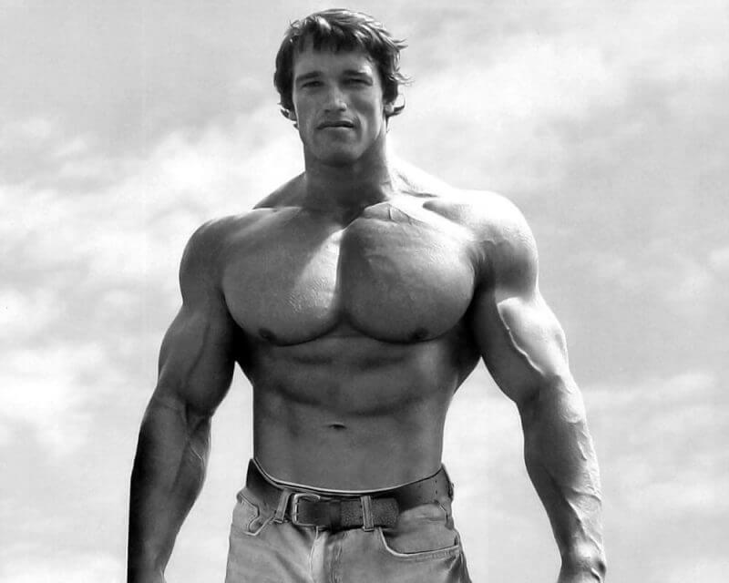 musculine bodybuilder