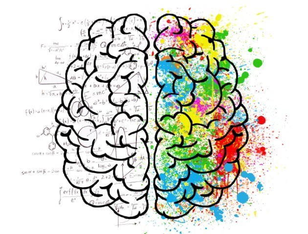 Instant Manifestation Secrets sketched brain with one half black and white and the other one colorful