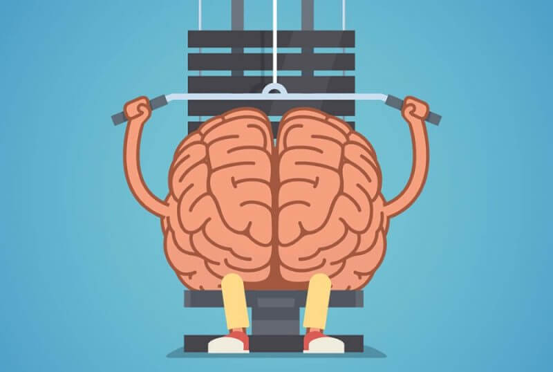 Athletic and fit brain doing heavy weight training. Training mind powerful. Flat vector concept illustration.