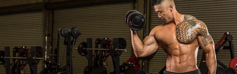 bicep workouts