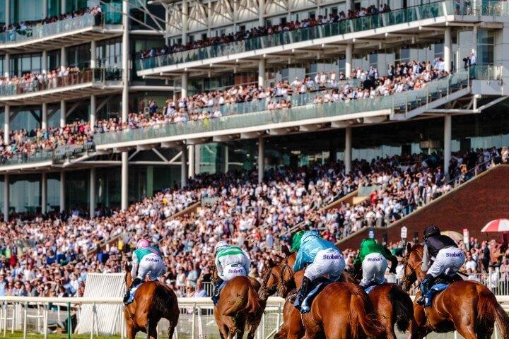 Profit Maximiser horse racing