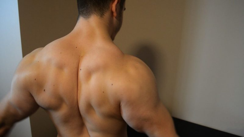 musculine man's back