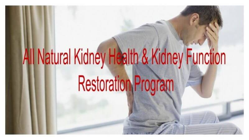 all natural kidney healtj and kidney function restoration program review with a man holding his waist in the background