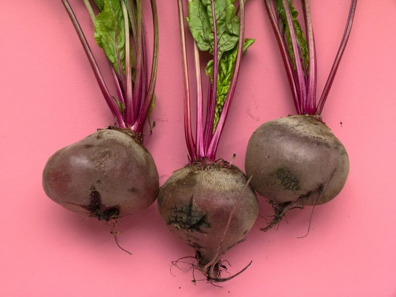 Beets on a pink background, vegetable on a pink background.