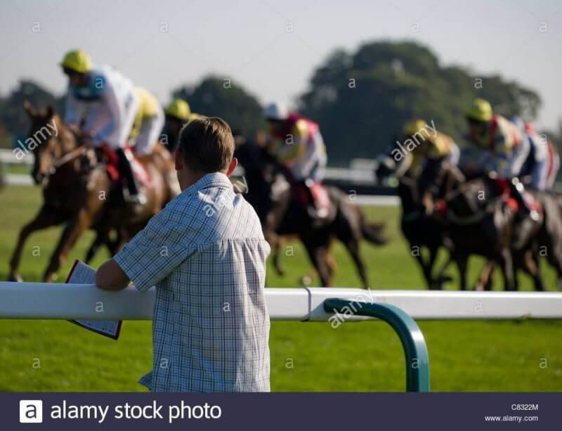 man looking at horse races