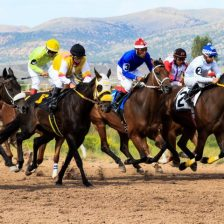 The Horse Race Predictor Review - Read Before You Buy!