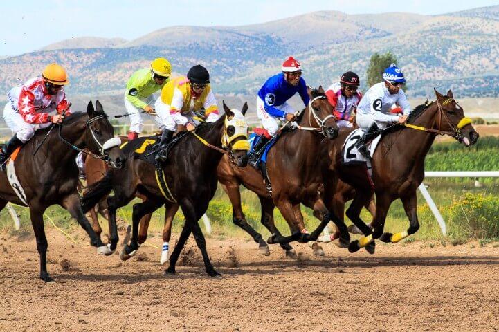 The Horse Race Predictor