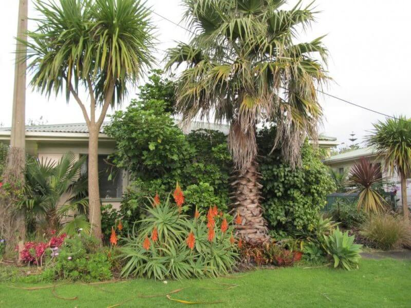 Ideas 4 Landscaping Review intended for Ideas4Landscaping - Mangut