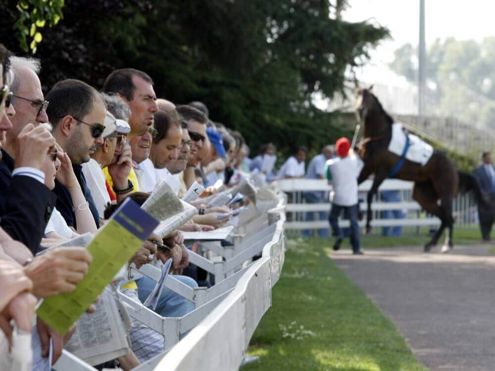 people betting on horse races