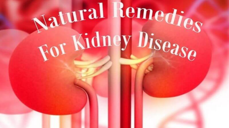 natural remedies for kidney disease and kidneys in the background