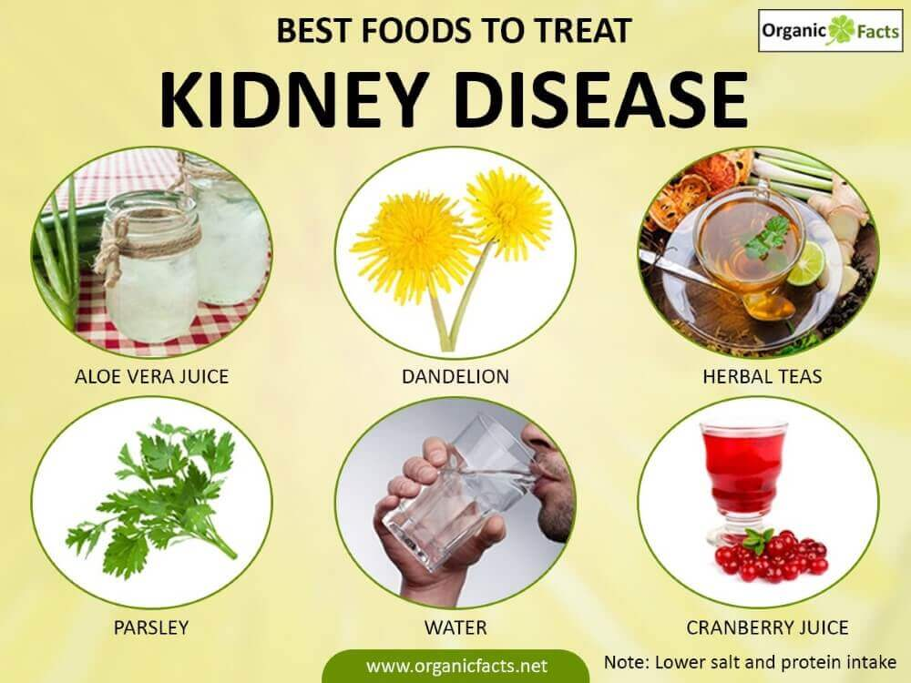 best foods to treat kidney disease