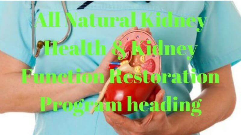 all natural kidney health and kidney restoration program heading review