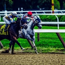 Strike Rate Racing Review - What You Must Know Before You Buy!