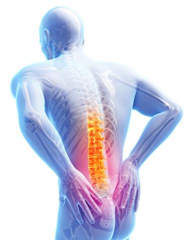 Fix My Back Pain