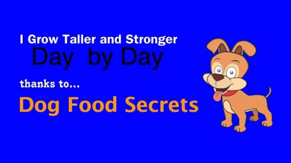 dog food secrets review in revelation
